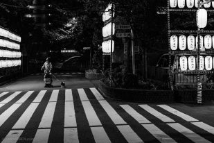 Japanese Lanterns by Night - Osaka, Japan